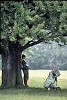 Golf Caddy shelters from the rain under a tree