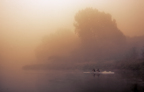 Rowers on a foggy river.